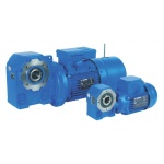 AS Series Worm Gear